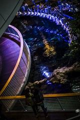 Aquarium Pool and Lights (M. Kamran Meyer) Tags: sanfrancisco blue water pool museum reflections lights aquarium walkway halogen railing californiaacademyofsciences nightlifeattheacademy