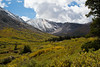 Platte Gulch (Ed_Silver) Tags: mountains colorado platte gultch elementsorganizer