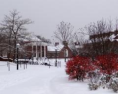 デラウェア大学のSNSにある写真3です。
