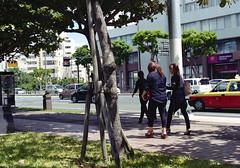 泊 歩くひとたち Naha-si, Okinawa (ymtrx79g ( Activity stop)) Tags: street plant color slr film japan analog nikon kodak 35mmfilm okinawa 135 沖縄 植物 kodakgold100 街 写真 銀塩 フィルム nikonnewfm2 那覇市 nahasi nikonainikkor50mmf14 歩行走行 walkandrun 201311blog