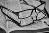 Four Eyes (Nigel Jones LRPS) Tags: eye glasses see specs spectacles dictionary foureyes