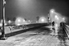 Around San Diego: Early Riser (rmc sutton) Tags: ocean blackandwhite bw mist fog night lights nikon sandiego nighttime oceanbeach obpier oceanbeachpier nikond800 sigma50mm12