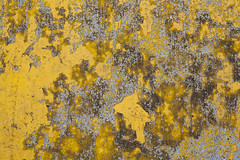 yellow paint on concrete median (jlodder) Tags: chicago illinois unitedstates us paint flakes median whatcoloristhatanyway flickrfriday yellow ilobsterit texture