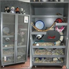 new rat cage (Mientsje) Tags: pets animals rat handmade cage rats hok kooi ratten knaagdieren handgemaakt