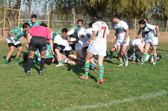 DSC_9067 (Rugby Old Green) Tags: rugby estacincentral arusa noviciado oldgreen