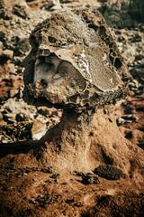 Mushroom Rock (Do the Twist!) Tags: ocean sunset clouds landscape hawaii lava rocks maui vegetation nakaleleblowhole