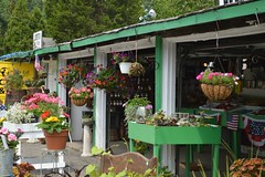 Farm Stand (itchinstitchin) Tags: ri plants nature shop store rustic greenhouse veggies chic finds grown shabby farmstand natureprovides