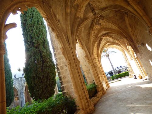 Bellapais Abbey, cloister (5)