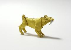 Smilodon (joigami) Tags: origami design sculpture tiger sabertooth sabertoothtiger dinosaur prehistoric iceage yellow yellowranger powerrangers
