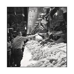 boqueria 2 • barcelona, catalunya • 2016 (lem's) Tags: boqueria market marché barcelona barcelone catalunya catalogne catalonia sapin espagne zenza bronica