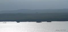 Eshaness_085 (Hlne Peltier) Tags: shetland mainland eshaness