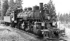 Long-Bell Lumber Company Baldwin 2-6-6-2 Mallet articulated oil burning steam locomotive # 1001, is in logging service and is seen in the area of Tennant, California, 1948, Guy L. Dunscomb, Charles Snyder collection (alcomike43) Tags: old blackandwhite bw classic vintage photo engine trains scan historic photograph locomotive freighttrains mallet baldwin articulated steamengine 1001 steamlocomotive oilburner flatcar railraod 2662 oilburning loggingtrains loggingcar tennantcalifornia longbelllumbercompany