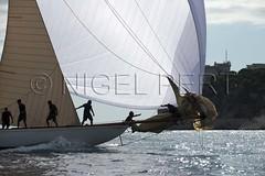 _NPO7939_N_Pert (nigelpert) Tags: photos images monaco voile regattas classicyachts voiliers régates 2013 tuiga monacoclassicweek nigelpert yachtsclassiques