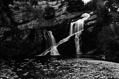 Cameron Falls (steveboer.com) Tags: bw white canada black water canon river blackwhite waterfall nationalpark falls alberta 1022 watertonlakes waterton cameronfalls 60d