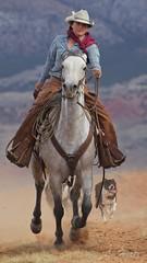 Kelly (blackhawk32) Tags: hideout horses hideoutlodge wranglers bighorn wyoming cowboys cowgirls range west