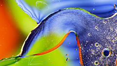 Light Trails and Bubbles / More experimentation with Oil & Water (Jacqueline C. Verdun) Tags: light copyright usa macro art water mi photography nikon jackie brighton unitedstates michigan jacqueline oil allrightsreserved d800 verdun 2015 jcv d810 jacquelinecverdun jacquelineverdun verduncom jackieverdun jverdun