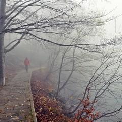 viaggi (Claudia Gaiotto) Tags: trees lake man fog silence nebbia brumes nebla viaggiinteriori