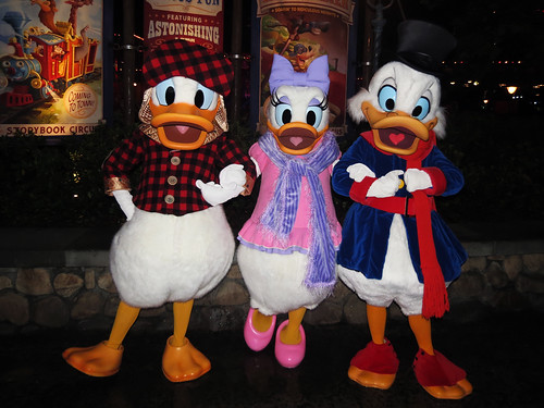 Donald Duck, Daisy Duck and Scrooge McDuck