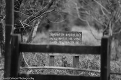 Arboretum Mono (scott calnon) Tags: trees sign windyday focus branches arboretum reservoir fx brisk burrator d700