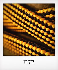 "#DailyPolaroid of 14-12-13 #77 • <a style=""font-size:0.8em;"" href=""http://www.flickr.com/photos/47939785@N05/11432139006/"" target=""_blank"">View on Flickr</a>"