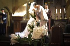 しあわせのお裾分け。 (e_haya) Tags: wedding flower fujifilmxf1