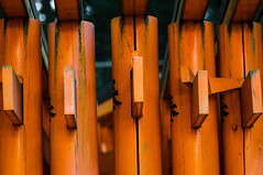 toriis #3 (jam343) Tags: japan kyoto shrine 京都 90mm torii 鳥居 fushimiinari fushimi fushimiinaritaisha 稲荷 伏見稲荷大社 伏見稲荷 fushimiinarishrine 伏見 千本鳥居 toriigates 1000toriis