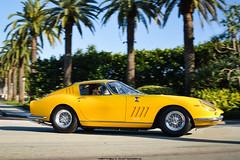 Ferrari 275 GTB (Matthew C. Photography) Tags: italy classic beach vintage photography hotel nikon matthew c ferrari palm breakers concours v8 gtb 275 v12 2014 cavallino gtb4 2013 d3200