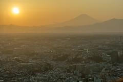 Evening sunlight (Takashi(aes256)) Tags: sunlight mountain japan evening cityscape fuji yokohama 山 太陽 夕日 横浜 富士山 landmarktower observationdeck ランドマークタワー 夕方 街並み 展望台 nikonafsnikkor70200mmf28gedvrii nikond5200