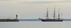 Trois Mats Belem (Philippe POUVREAU) Tags: belem voilier ship saintnazaire port harbour sailing vieuxgréement frankreich francia frança frankrijk frankrig frankrike francja