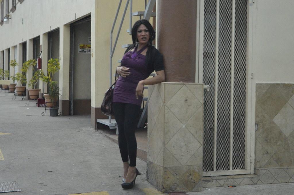 Transexuales tijuana