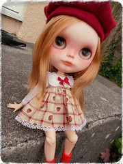 So, this is my new house? (Missy_Crane) Tags: cute doll bees delight kawaii blythe custom simply imogen dreamland idollzoo