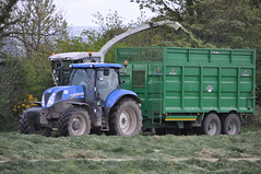 Claas Jaguar 870 SPFH filling a Broughan Engineering Mega Hi-Speed Silage Trailer drawn by a New Holland T7 200 Tractor (Shane Casey CK25) Tags: claas jaguar 870 spfh filling broughan engineering mega hispeed silage trailer drawn by new holland t7 200 tractor