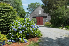 Entrance to the Sea Meadow Inn (ho_hokus) Tags: flowers summer ma capecod massachusetts driveway brewster 2015 fujix20 fujifilmx20 seameadowinn