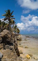 _MG_7443 (norberto.endo) Tags: islasanandres playa mar cielo azul paraíso colombia