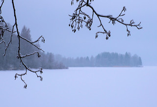 Misty Winter Lake 2