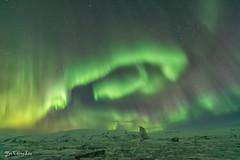 Northern lights over Jökulsárlón Iceberg Lagoon (FollowingNature (Yao Liu)) Tags: northernlights jökulsárlóniceberglagoon iceland auroraborealis aurora auroradancing followingnature jökulsárlón iceberg lagoon ngc icelandphotos icelandphototrip icelandwinter icelandnorthernlights icelandwinterphotos icelandphotography snow icelandphotoswinter icelandphotographylocations