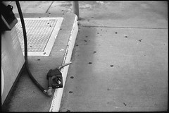 Not even holstered (FreezerOfPhotons) Tags: cosinavoigtlanderbessar3m nokton40mm14sc singlecoatedlens ultrafineextreme100 ultrafine xtol abandonedfillingstation petrol gasstation outofbusiness metal paint concrete rubber
