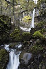 Elowah Falls (Joshua Johnston Photography) Tags: oregon pacificnorthwest pnw columbiarivergorge waterfall joshuajohnston canon6d elowahfalls rokinon14mmf28 samyang14mmf28
