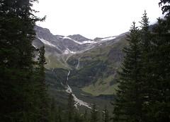 03-IMG_8424 (hemingwayfoto) Tags: österreich alpen austria baum europa felsen fichte fliesend gletscher hohetauern landschaft moräne nationalpark natur naturschutzgebiet rauris reise schnee tannenbaum urwald wasser