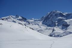 Balade sous le soleil (Iris_14) Tags: zermatt gornergrat rotenboden monterosa lyskamm glacier gletscher valais wallis suisse switzerland schweiz dufourspitze pointedufour nordend gornergletscher
