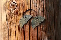Demi marque (Pi-F) Tags: bois ligne marque étiquette beziers gaillard numéro demi cassé clou partage 190 s fibre cercle noeud fente poteau pylone électrique maco closeup texture matière vertical