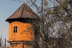 Orange spring (Paweł Szczepański) Tags: bytom śląskie poland pl sonyflickraward sincity