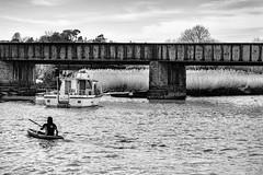 Jetty Marsh Nature Reserve. (_John Hikins) Tags: bw black blackwhite blackandwhite white wildlife marsh nikon nikkor 50mm 50mm18 d5500 devon newton abbot canoe kayak boat bridge