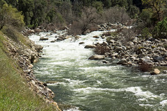 Rushing Merced River and Banks - Below Yosemite (BlueVoter - thanks for 1.6M views) Tags: mercedriver yosemite nationalpark rapids river water rocks trees landscape scenery