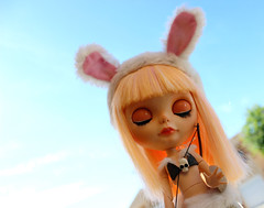 Violeta - Savage Bunny Sisters