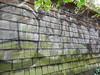 Dcups (Dupeman) Tags: seattle graffiti dcups
