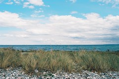 (Aage Drake) Tags: blue sea summer sky seascape film beach stone clouds 35mm landscape denmark island coast view pebble shore nikonfe lymegrass horzion 28mmf28 sejer kodakektar100