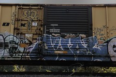 Dual (Revise_D) Tags: graffiti revise dual graff tagging freight revised trainart fr8 vmx benching fr8heaven fr8aholics revisedesigns revisedeigns revisedesign fr8bench