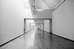 DSC_4933-2 (poulet192) Tags: museum architecture grenoble blackwhite