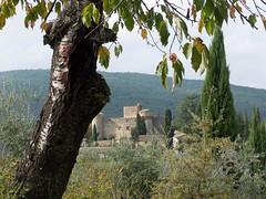 Toscane (mistinguette18) Tags: lumix panasonic tuscany chianti toscana toscane chteau vigne italie fz150 meleto
